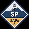 SAFE PM logo